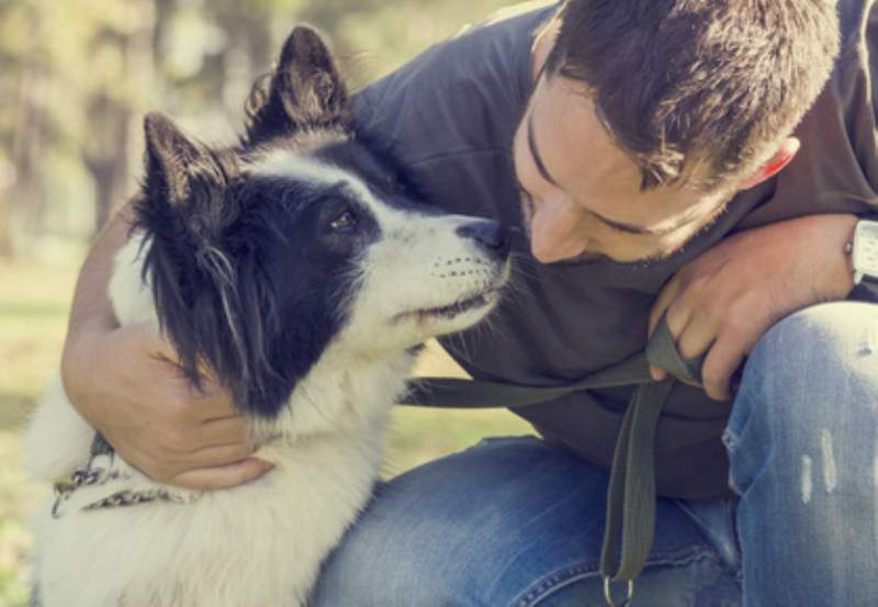 Le professioni ideali per chi nutre un amore genuino, sincero ed incondizionato per gli animali